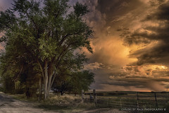 Brilliant (Chains of Pace) Tags: oklahoma oldwest storm western weather clouds country rural fence panhandle guymon