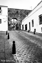Puerta del Castillo (martagaldi) Tags: jerezdeloscaballeros jerez badajoz extremadura patrimonio pueblo piedra cal puerta castillo templarios
