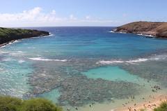 IMG_5230 (C-N, Chen) Tags: hanaumabay  honolulu  hawaii
