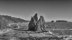 Iconic (Matthew James Lewis) Tags: olympicnationalpark rialtobeach seastacks ocean pacificocean trees beauty beach blackandwhite peaceful mora rialto