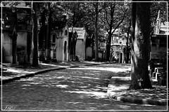 Pre Lachaise 5 (fred_kd) Tags: cimetire pre lachaise paris paysage noir et blanc landscape nikon d3100