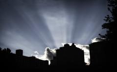 Afternoon_Light I (Joe Josephs: 2,861,655 views - thank you) Tags: joejosephsphotography manhattan newyorkcity urbanlandscape landscape skyline centralpark centralparknewyork parks urbanparks urbanlandscapes sky skylines skyscape clouds light sunlight