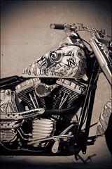 bikes-2009world-102-c-l