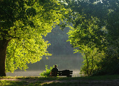Mditation du soir  l'tang de Cernay. (jmsatto) Tags: soir lumire feuillage arbres tang homme cernay vauxdecernay