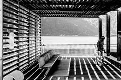 strips (Daniel Stroebel) Tags: luganersee porlezza urlaub streifen schwarz weis sw einfarbig strasenfotografie mensch hund licht schatten see wasser vorhandeneslicht natrlicheslicht nikon d7000 kontrast stripes black white bw monochrome streetphotography man dog light shadow lake water availablelight naturallight contrast linien lines