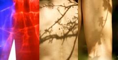 """""""lo spazio ha la forma dei miei sguardi"""" (dragoncello64) Tags: shadow man natura ombre uomo trittico"""