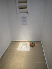 girl urinal