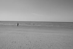 120526 Marple parkrun 201 (Nozza Wales) Tags: uk sculpture men art beach public liverpool place castiron another antony gormley crosby anthonygormley sefton anotherplace