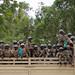 AMISOM & Somali National Army operation to capture Afgoye Corridor Day #4 13