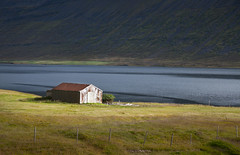 A shed by a fjord (RWYoung Images) Tags: sea mountain water field grass barn rural farm shed fjord paddock rwyoung