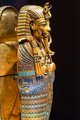 Stomach holder (chimerasaurus) Tags: seattle kingtut egypt tut sciencecenter tutankhamun pacificsciencecenter seattlewa