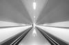 Tunnel of life (twan-k5) Tags: rotterdam metro 2012 50faves 35faves