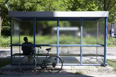 (See The Bear - slowly getting back) Tags: street urban munich münchen streetphotography spnp mÿnchen madsbruun