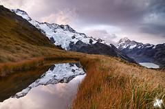 Southern Splendor (Joshua Cripps) Tags: southisland southernalps aoraki hookerglacier muellerglacier mtcooknationalpark mtsefton sealytarns hookerlake