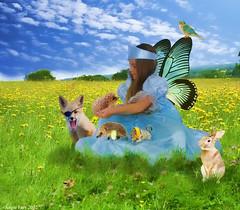 The Animal Healer... (rubyblossom.) Tags: wild rabbit bird girl animal animals princess fox rubys grandaughter resources darcie hedgehogs healer rubyblossom rubystreasures rubysstockchallenge14