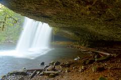 Upper Butte Creek Falls (Courtarro) Tags: waterfall hdr upperbuttecreekfalls