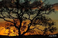 Crepúsculo (1712) (Jorge Belim) Tags: pordosol entardecer crepúsculo fimdodia canoneos50d