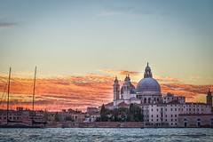 2016_Greece and Venice-9766-bewerkt.jpg (HummingbirdNL) Tags: 2016 italie venetie venice