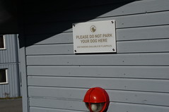 Please do not park your dog here (tim ellis) Tags: holiday spitzbergen svalbard arctic serenissima msserenissima longyearbyen sign norway