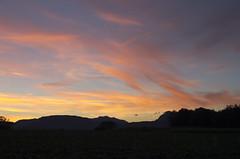 Tramonto (Emilio Pellegrinon) Tags: sunset tramonto friuli colors crepuscolo campi