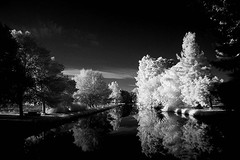 water way 1 Rechelieu park (photoautomotive) Tags: france french europe waterway water infrared ir tree trees reflection sky clouds olympus reflections outside