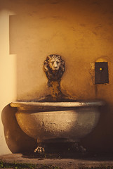 The Old Fountain (Yuliya Bahr) Tags: old city light italy sculpture sun abandoned fountain beautiful yellow lights florence italia shadows oldness lion tuscany firenze toscana fiesole florenz