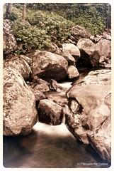 Fronzen in time (trdastidar) Tags: longexposure india waterfall lowlight nikon stream raw kerala rapid wayanad kalpetta meppadi d80 lanternstay