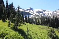 Mt. Rainier - Summerland (2011) (eneuman) Tags: mt rainier summerland