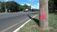 Bostas no Eixo (renatomoll) Tags: braslia graffiti rua plano eixo