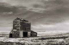 Abandoned (NightSkyMN) Tags: old abandoned southdakota ghosttown grainelevator okaton