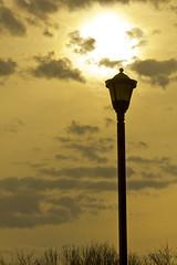 nergie (TreborF ) Tags: mars eos rebel soleil hiver rivire vol oiseau 2012 terrebonne nergie 550d t2i millesles milcanon canonrebelt2ieos550dhiver2012marsterrebonneriviremillelescanon