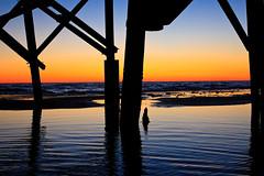 Reddington Sunset (Ryan Pimiskern) Tags: ocean wood blue sunset sky orange black reflection beach gulfofmexico silhouette stpetersburg tampa concrete pier florida fishingpier