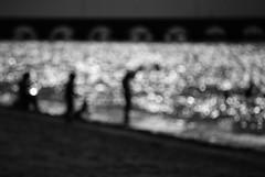 """a love that's shining all around here..."" (Mister Blur) Tags: sea blur beach contraluz mexico puerto atardecer muelle mar nikon bokeh harbour dusk shoreline yucatan playa desenfoque contrejour progreso thebeatles d60 yucatan mexico rocoeno lineacostera"
