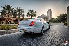 Jaguar XJL-2.jpg (CarbonOctane) Tags: white dubai shoot uae review july jaguar 2012 xj carbonoctanecom 2012jaguarxjl