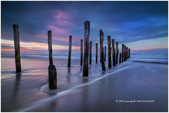 Southern Skies (Dylan Toh) Tags: newzealand beach landscape photography stclair dunedin dee everlook