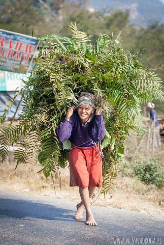 Życie w cieniu Himalajów