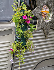 Botanic Bus - WOMAD 2016 (dorsetbays) Tags: botanicbus botanic bus flower floral garland womad womadcharltonpark womadcharltonpark2016 womad2016 womaduk womaduk2016 uk 2016 womadfestival womadfestival2016 festival event music musicfestival gig worldofmusicartsanddance arts dance colour people fun summer charltonpark malmesbury wiltshire england
