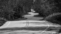 Asphalt Doodle (Madison Guy) Tags: road winding jensjensen landscapearchitect landscapearchitecture doorcounty wi bw