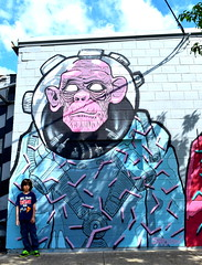 Houston mural (Cristali Designs) Tags: houston texas murals shreddi bike squeleton pink artwork artist creative blue streetart graffiti cristalidesigns urbanart wallart murales colour colorful