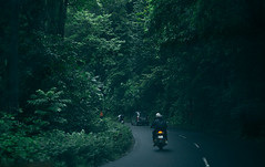 DSC01304 (Sujith Ninan) Tags: travel photography sony sonya6000 35mm 16mm kerala india munnar landscapes monsoon vsco asia friends digital flower sky tree green mountians portrait family roadtrip road car bw new me