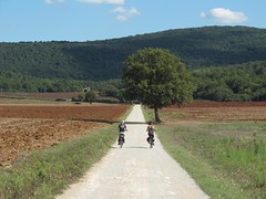 Slow Travel Fest di Monteriggioni (intoscana.it) Tags: slowtravelfest monteriggioni eventi francigena siena terredisiena sienafrancigena francigenatoscana viafrancigena campagna toscana intoscana