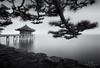 Embraced (Loscar Numael) Tags: longexposure japan pagoda distagon2815 zeiss singhray morslo decor blackandwhite seascape skancheli