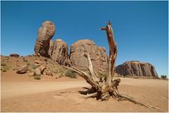 Monument Valley 0002 (Ezcurdia) Tags: monumentvalley utah arizona usa eeuu navajo tsebiindisgaii limolita navajotrivalpark johnfordpoint