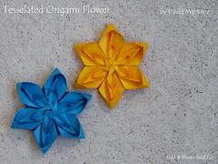 Tessellated Flower by David Martinez (esli24) Tags: davidmartinez ilsez leylatorres tessellatedflower origami origamiflower papierfalten