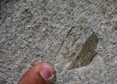 Trachyt (correia.nuno1) Tags: deutschland geologia geology kln trachyt trachytvomdrachenfels traquito metamorfsmo