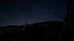 Estrellada (gasendi) Tags: lgg4 estrellas startrails nocturnas benimaurell alicante espaa spain gasendi smartphone noche night marte escorpion constelacion lactea g4 lg