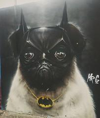 BATMAN VS BATPUG (cheshycat) Tags: graffiti graffitiart sydneystrretart pugdog batman dogcostume batdog dog dogart