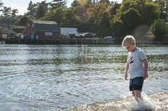 Pre-dinner warmup (grilljam) Tags: summer september2016 laborday seamus 4yrs mackerelcove baileyisland wading