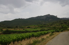IMGP8520 (Lucifer's Gaze) Tags: pentax k5  spain summer   winery  vinyard  cellar  rioja docarioja  sierradetolono