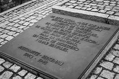20130916Auswitch II Birkenau13 (J.A.B.1985) Tags: auswitch poland polonia iiww worldwar iigm guerramundial holocaust holocausto soah